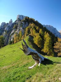 Pictures from Slovenian mountains 2