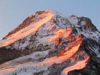 Coe (upper Left) Ladd Glacier, Mt. Hood