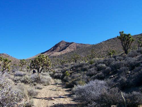 Crescent Peak