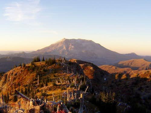 Mount Saint Helens from Bear Camp