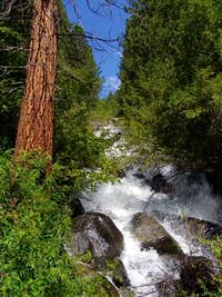 North Fork Big Pine Creek