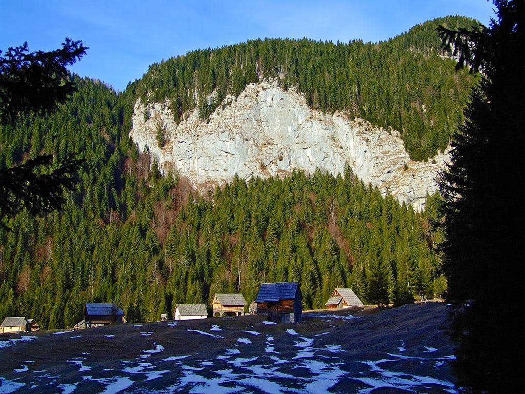 Blato alpine meadow