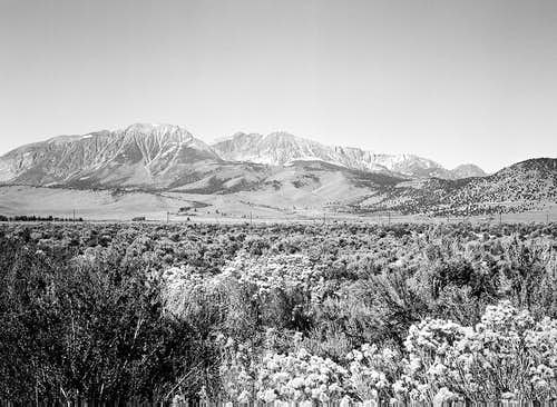 Eastern Sierra Escarpment