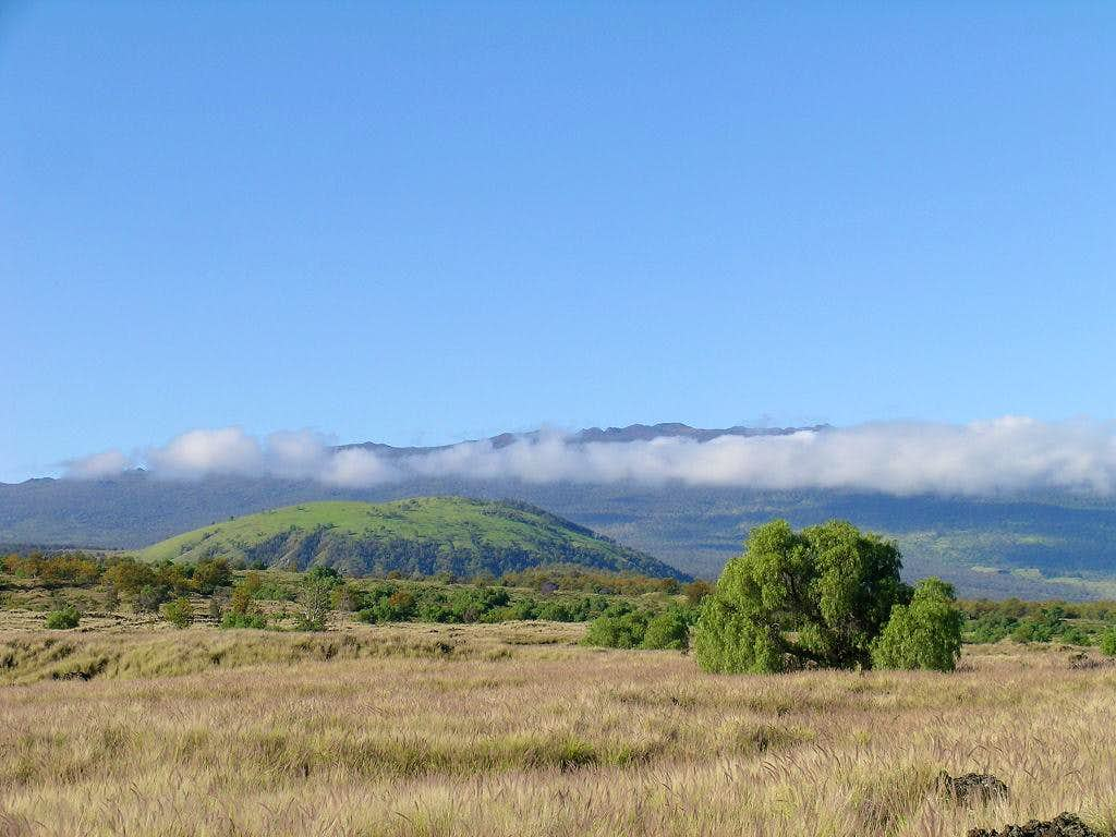 Puu Waawaa with Hualalai in the distance