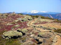 Mt. Washington from Mt. Lincoln