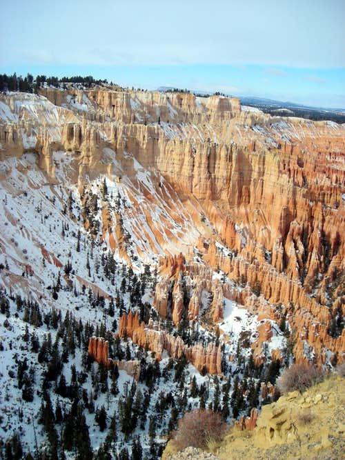 Bryce Amphitheater - January view