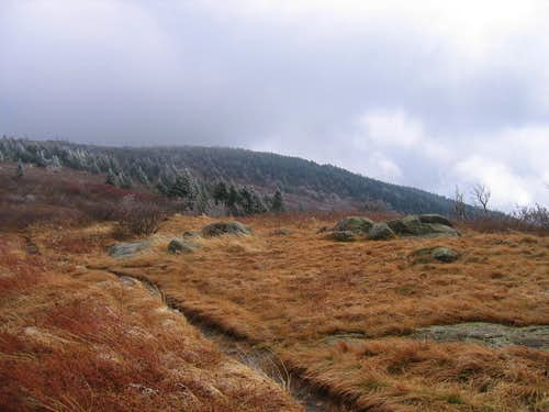 Grassy Ridge Bald encased in October ice
