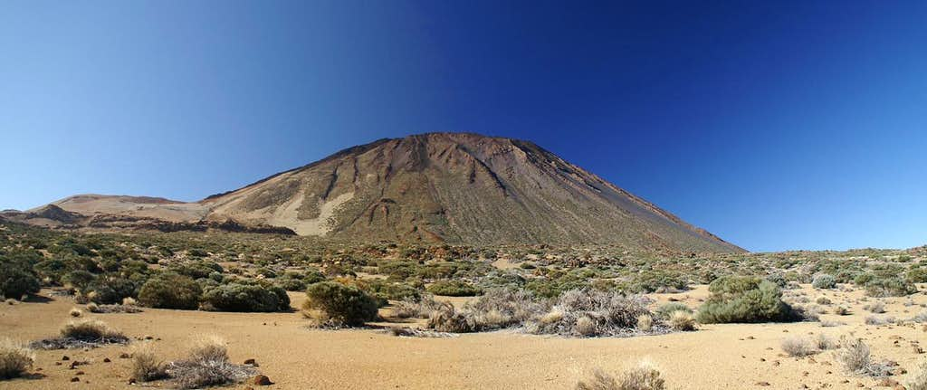 Broad backed Teide seen during the traverse to Montaña Blanca