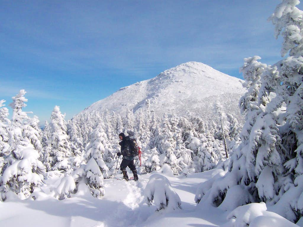 Mt. Marcy from Gray