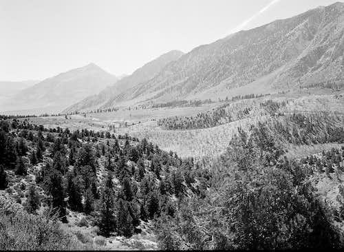 Owens Valley Vista