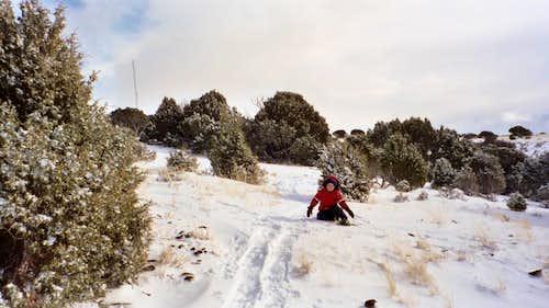 Cedar Mountain in December