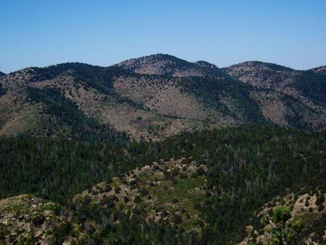 Bush Mtn from Pratt Ridge