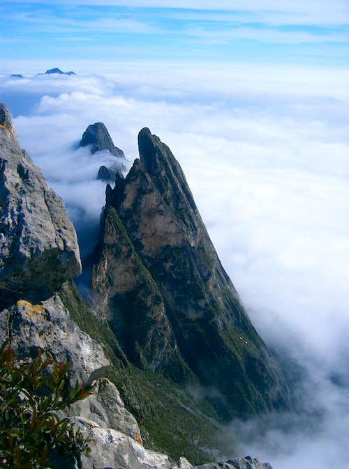 Ridge on El sapo