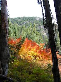 Fall Foliage on the way up
