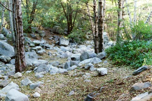 Creek at Switzer\'s Picnic Area Trailhead