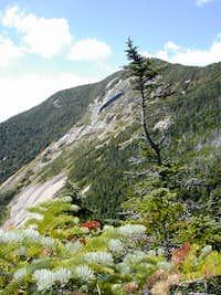 Mount Gothics