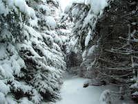 Slide Trail