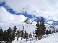Mt. Alta