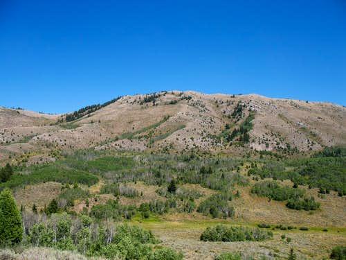 Bingham County Idaho TR