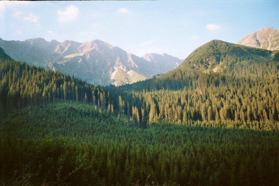 Roháčska dolina Valley
