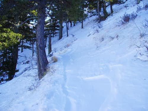 Deep drifts on the Guadalupe Peak Trail