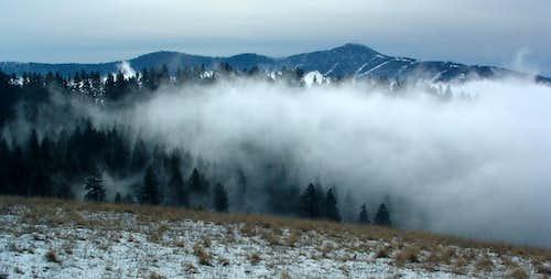 Mists Rising