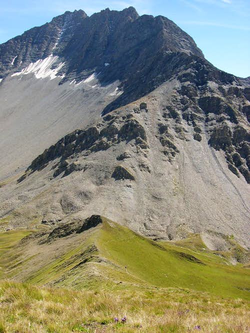 The ridge rising from Tête de Secheron <i>2902m</i> to Grande Rochère <i>3326m</i>