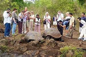 A Galapagos Islands Tour
