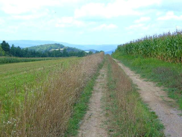 View from a cornfield not far from the summit