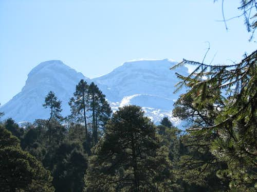 Izttaccíhuatl through the forest