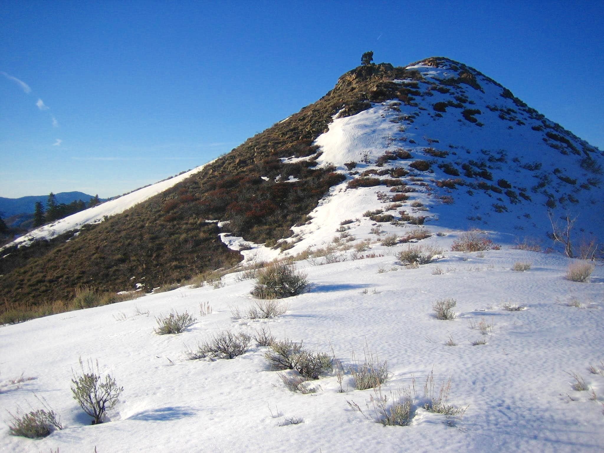 Irish Creek Ridge (South Ridge)