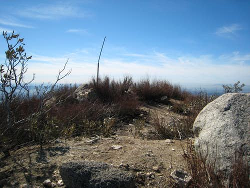Summit of Hastings Peak (4000\'), San Gabriel Mountains