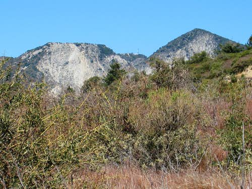 L-R: Mt. Markham, Mt. Disappointment (C), San Gabriel Peak