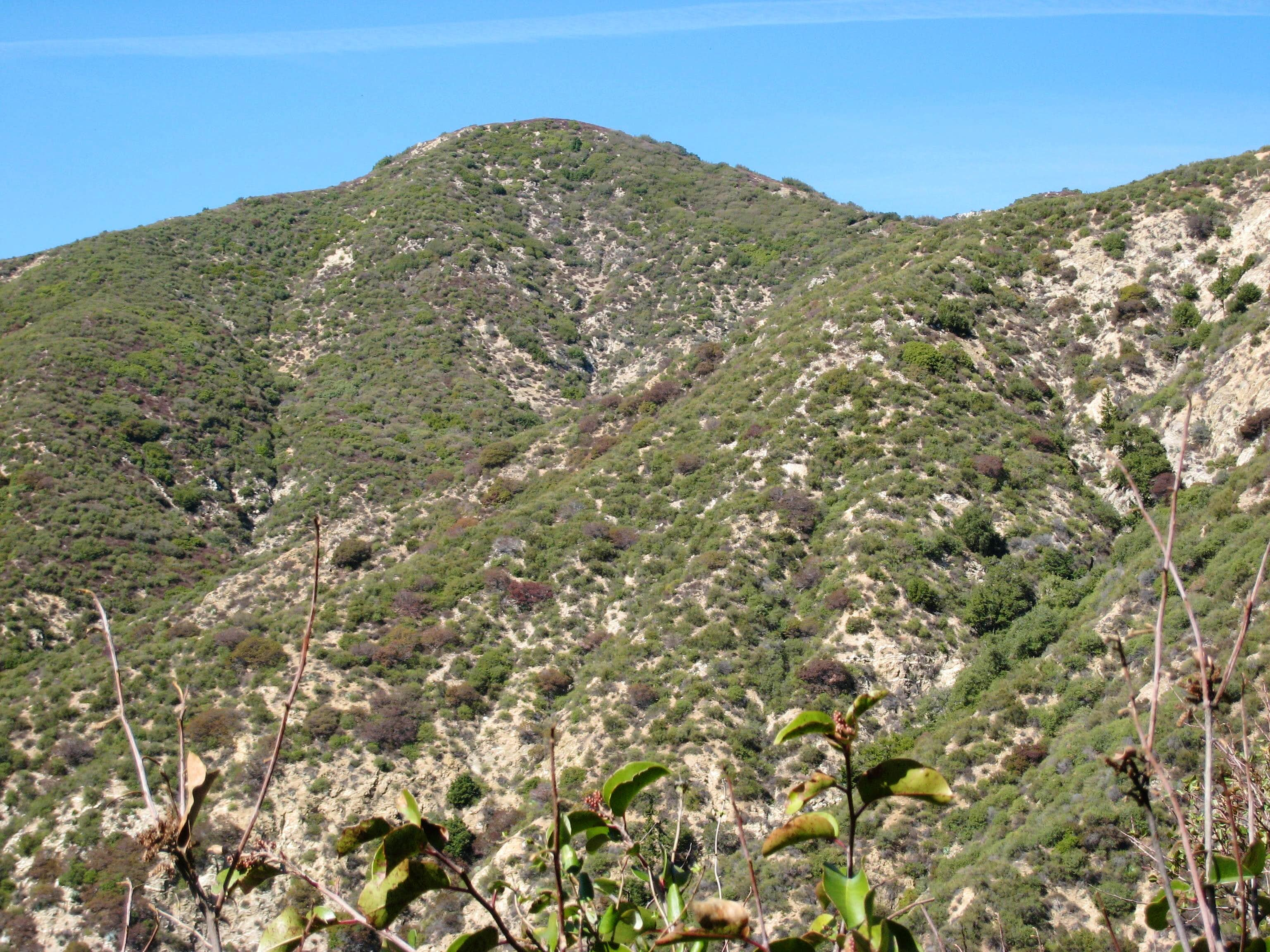 Hastings Peak