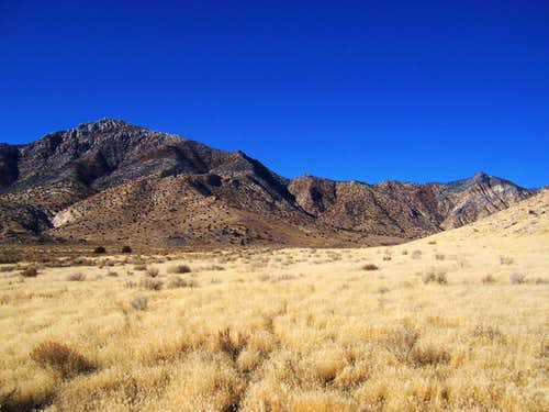 Desert Peak from Dell\'s Canyon