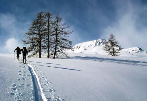 Skinning in Citrin Valley