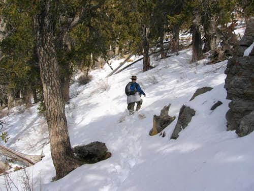 Trudging up towards the summit