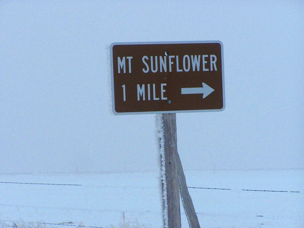 One Mile from Mount Sunflower