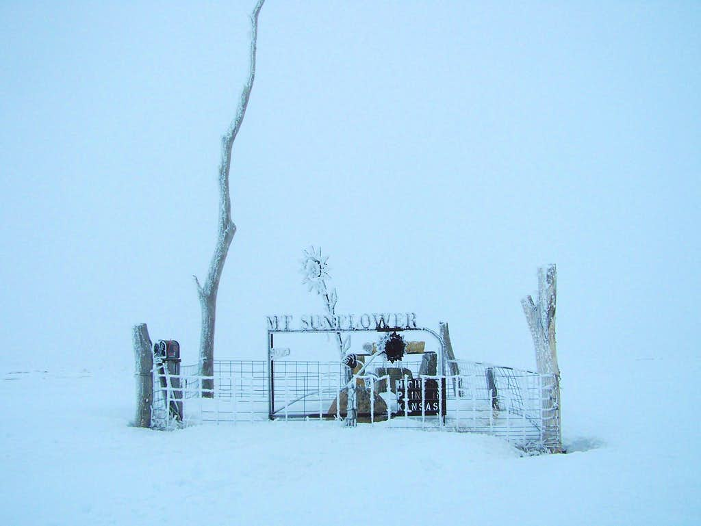 Mount Sunflower in the Winter