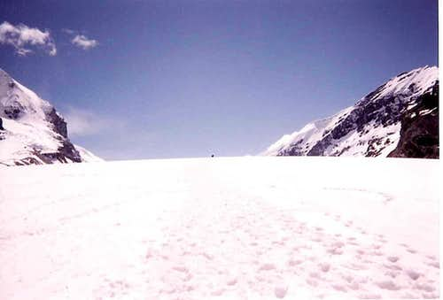 On The Icefield...