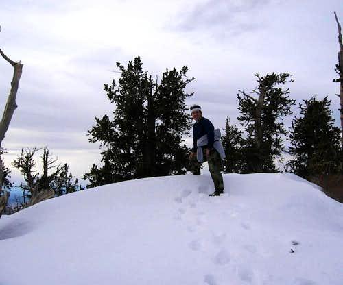 Top of Hayford
