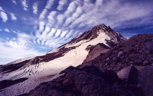 Newton Clark Glacier from Cooper Spur