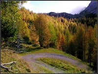 Autumn below Monte Schenone / Lipnik