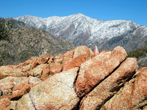 View NW of Mt. Baden-Powell  from just below Rattlesnake Pk Summit