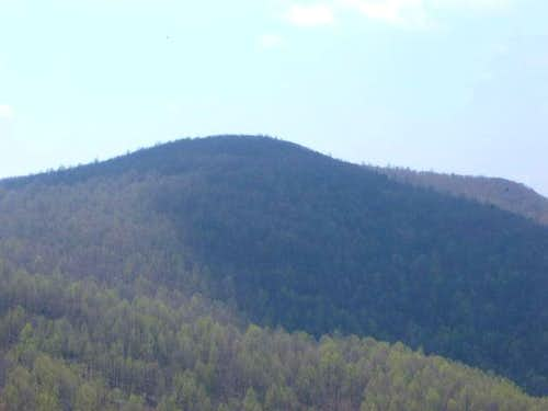 The heavily tree-covered Weaver Mountain