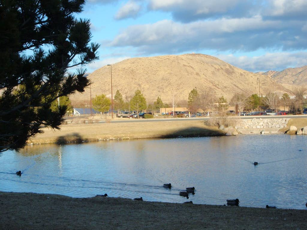 Late afternoon view of Rattlesnake from Reno