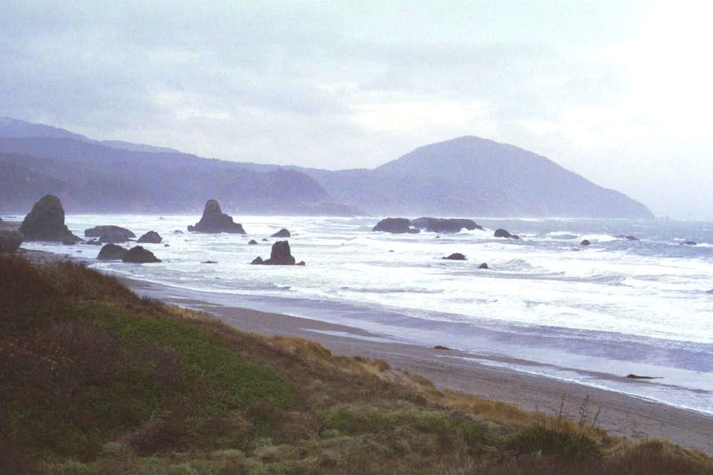 Humbug from Port Orford