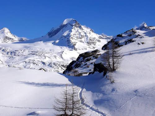 Ciarforon (3642 m), versante ovest