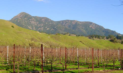 Mt. St. Helena from Alexander Valley.