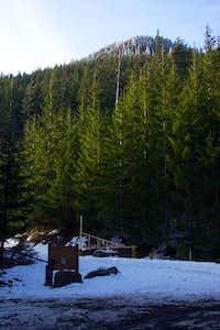Marys Peak Summit